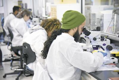 Pharma scientists
