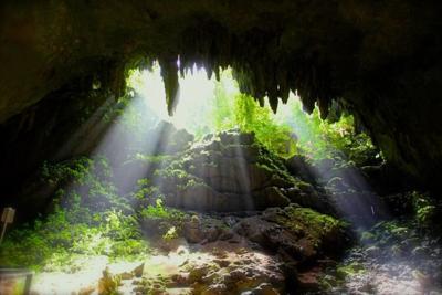 Camuy River Cave Park, 'Cavernas de Camuy'