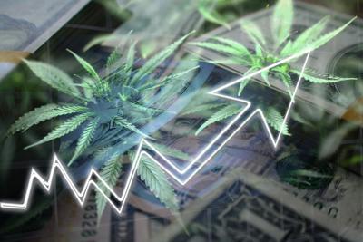 Medicinal Cannabis Sales Growth