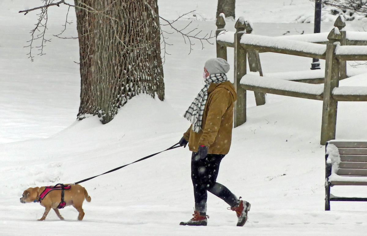 021821 WES Wilcox Park snow dog walkers hh 30577.JPG