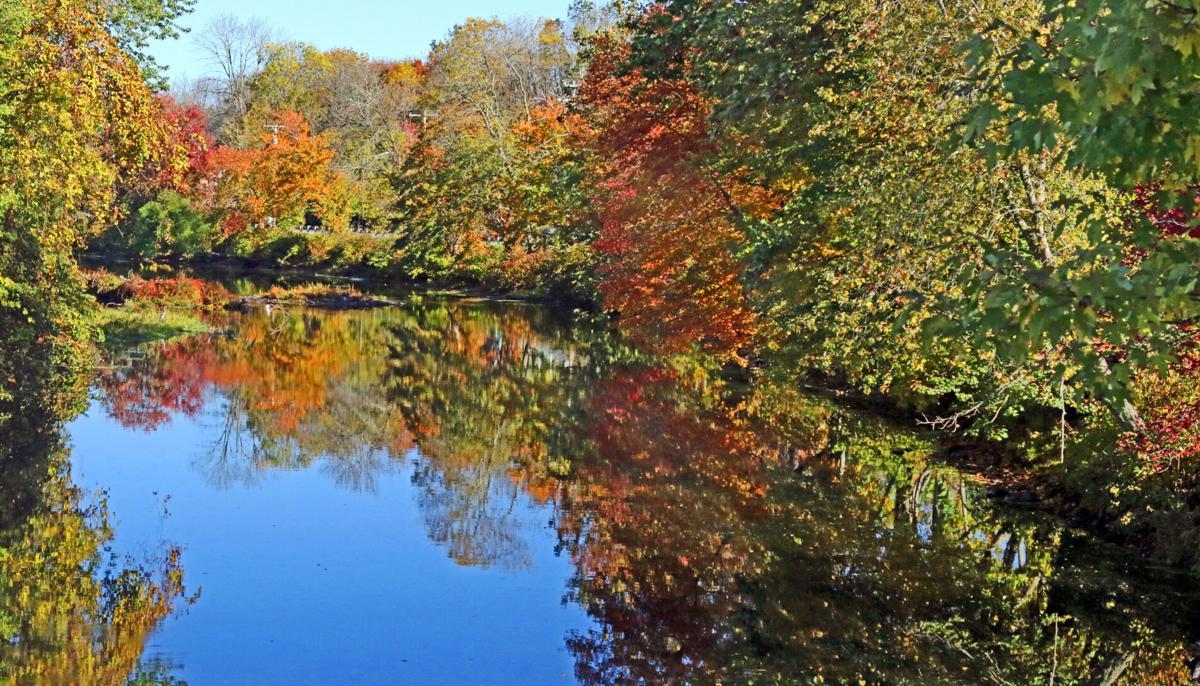 WES Autmn color on river 11699.JPG