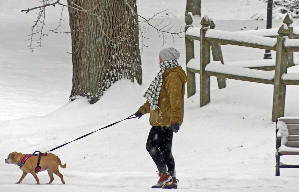 021821 WES Wilcox Park snow dog walkers hh 30578.JPG