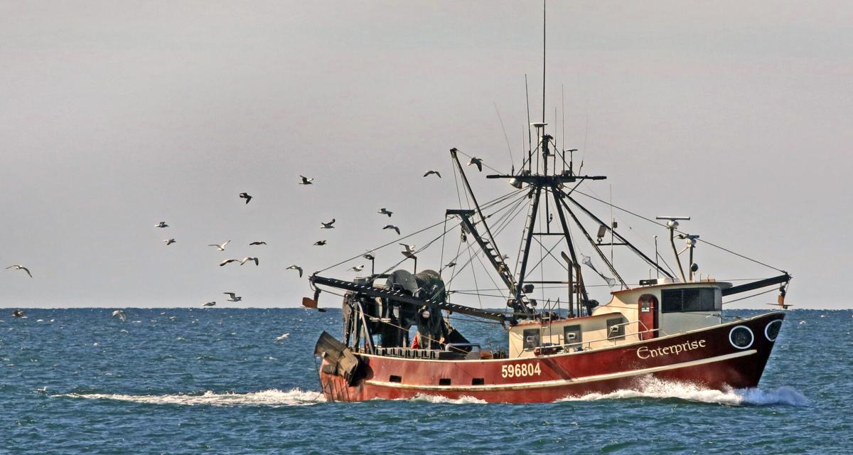 051221 WES Fishing boat with sea gulls hh 46759.JPG