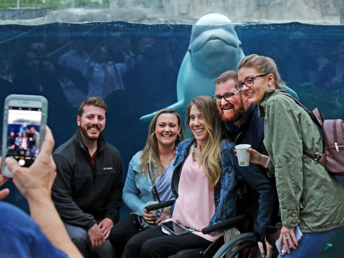 PHOTOS: Belugas and guests entertain each other at Mystic Aquarium event