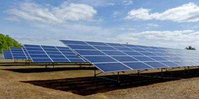 standing solar field panels