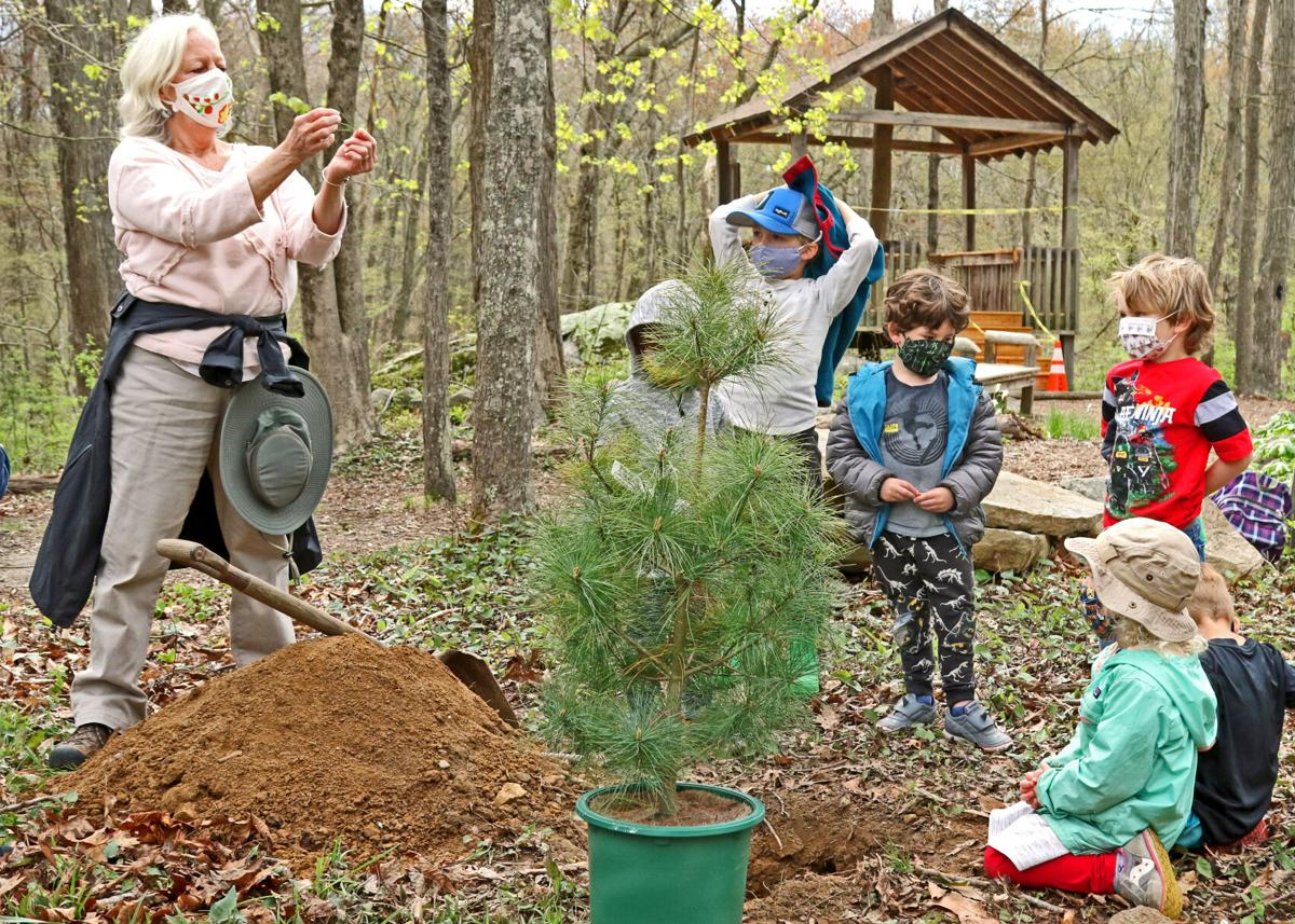 043021 STN DPNC Arbor Day planting hh 44029.JPG