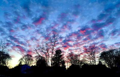 012120 WES treeline sunset purple hh01.jpg