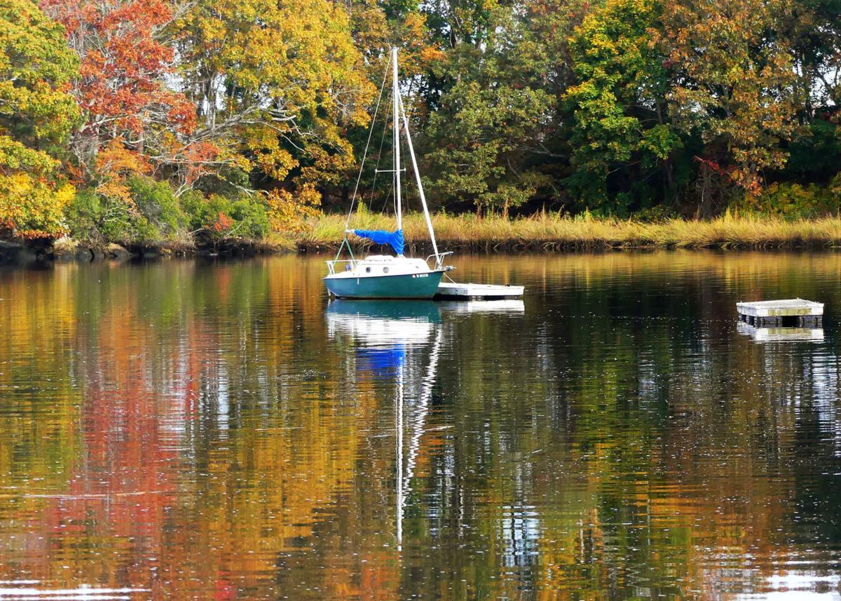 102519 WES Cove Gray's Marina in autumn 362.JPG