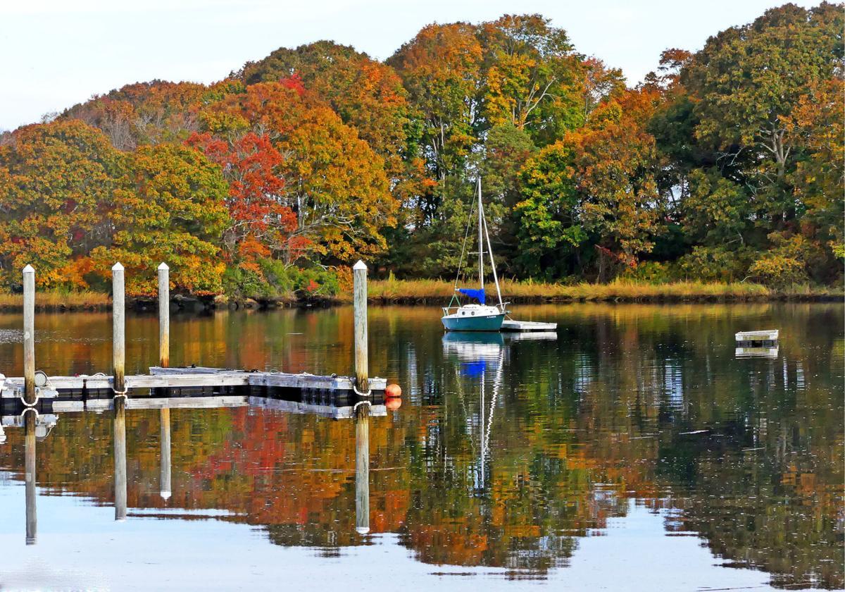 102519 WES Cove Gray's Marina in autumn 375.JPG