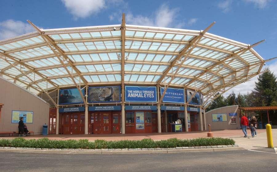 standing Mystic Aquarium