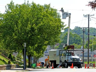 Eversource to trim trees along 115 miles of roadway in Stonington