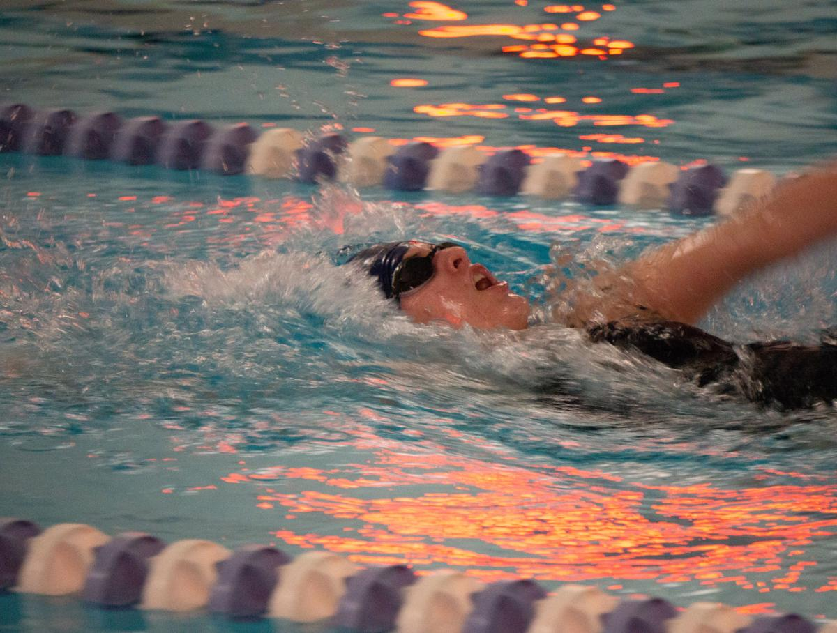 westerlyswimming1.jpg