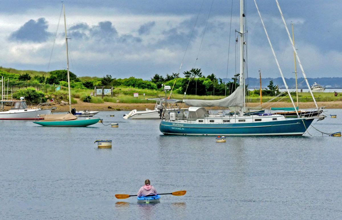 WES Kayaker in WH Harbor 24673.JPG
