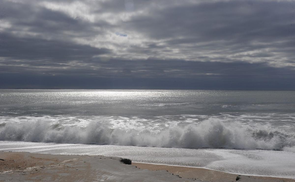 l. davidson beach.jpg