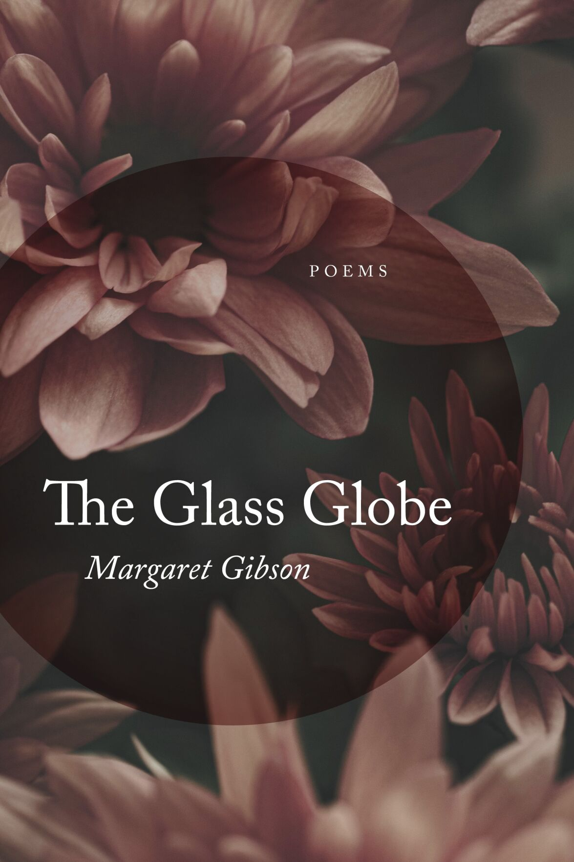 cover of The Glass Globe by Margaret Gibson.jpeg