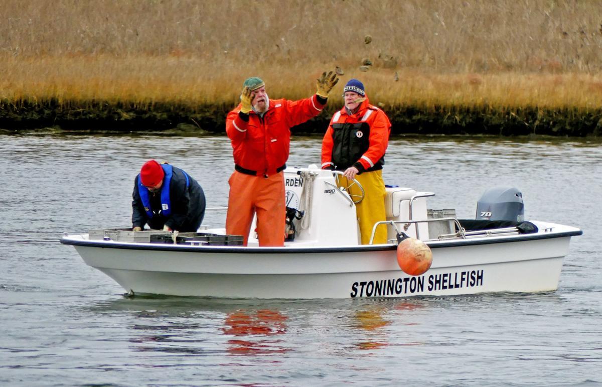 121319 MYS Shellfishing areas seeded 144.JPG