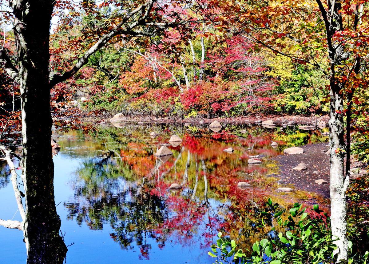 CHR Hope Valley autumn pond scene 11759.JPG