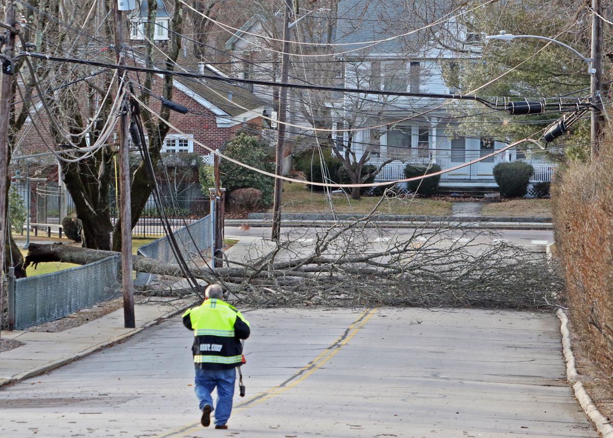 020720 WES Trees down in wind storm 1.JPG