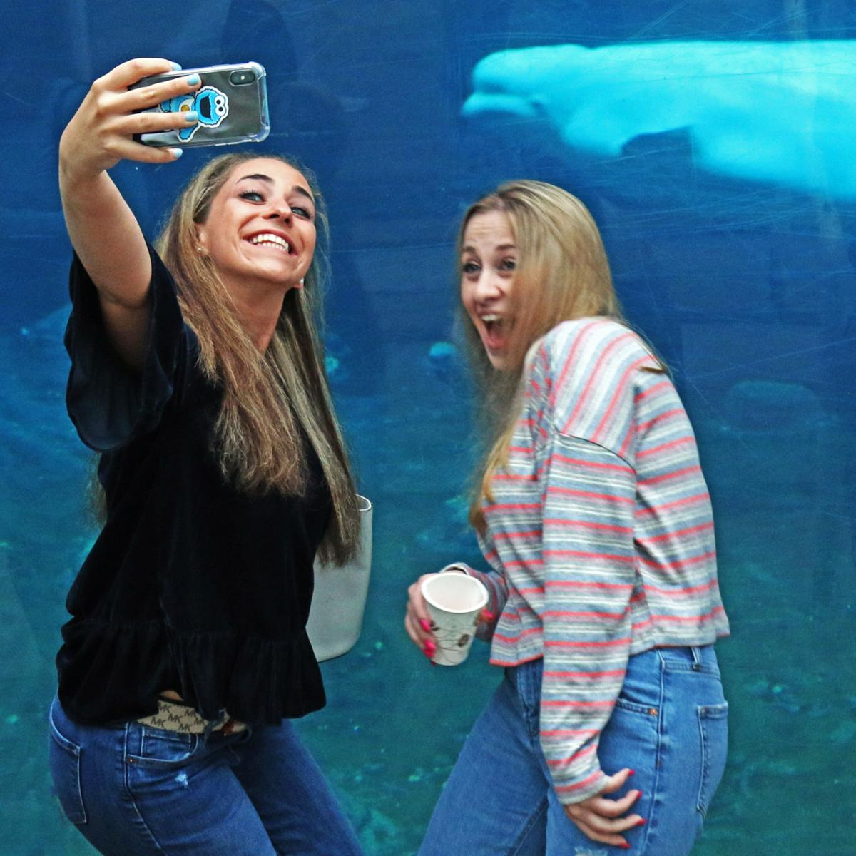 052419 MYS Cocktails with beluga whales 406.JPG