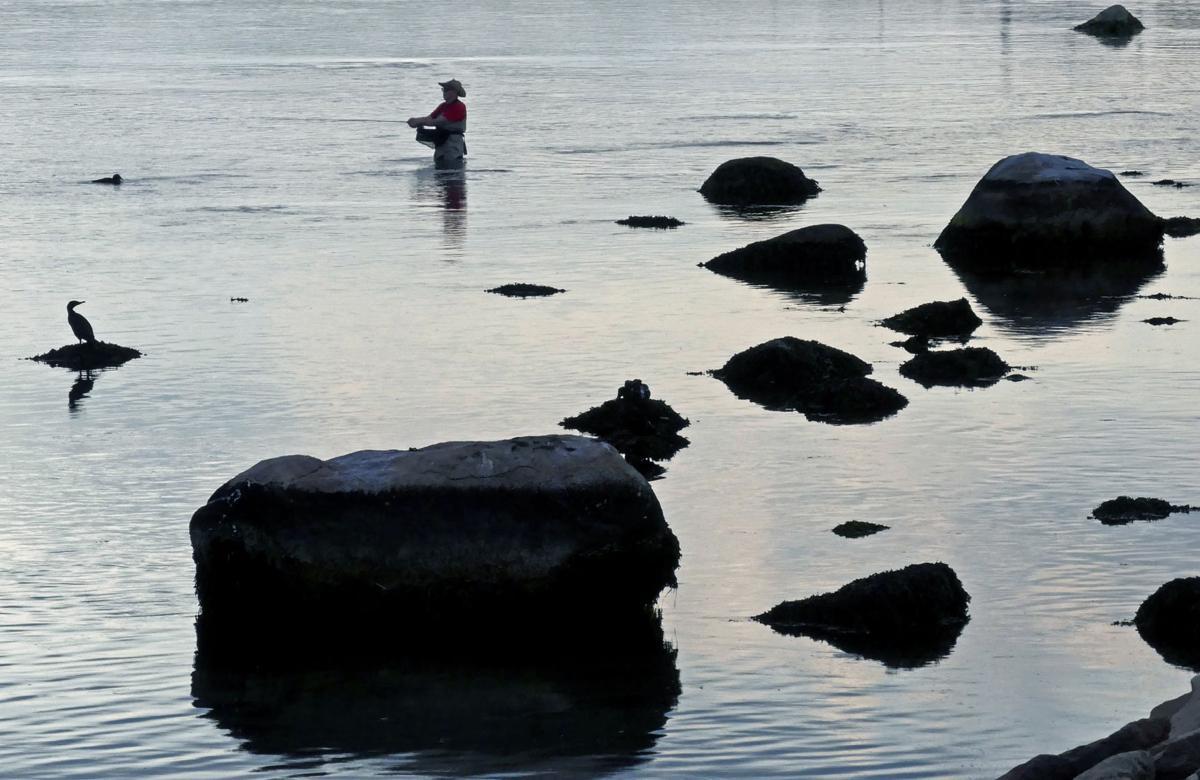 080519 WES Angler in Weekapaug Breachway 577.JPG
