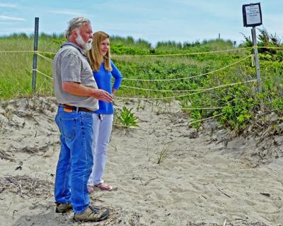Conservancy's annual report on Napatree Point: Beach is busy, bountiful and beautiful