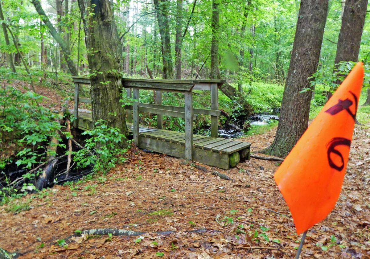 061819 RIC Richmond School hiking path 148.JPG