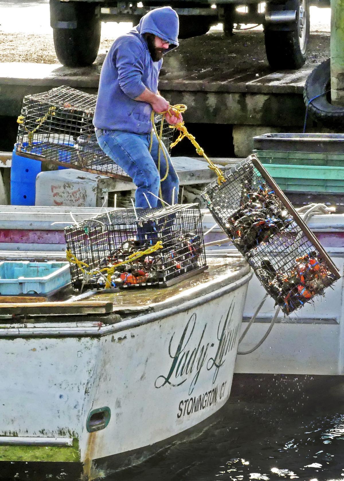 010820 STN Town Dock Lobster boat unloaded 599.JPG