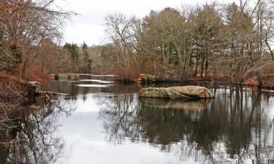 021519 RICH Wood River views hh 749.JPG