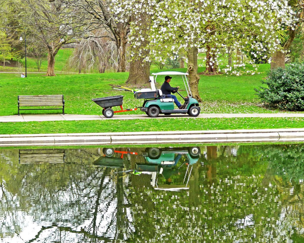 043019 WES Wilcox Park pond reflections 12.JPG