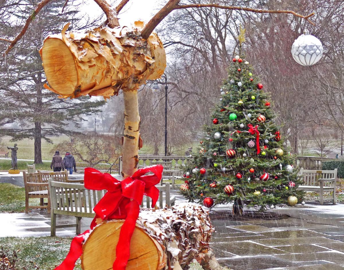 120219 WES Xmas tree in Wilcox Park in snow 71.JPG
