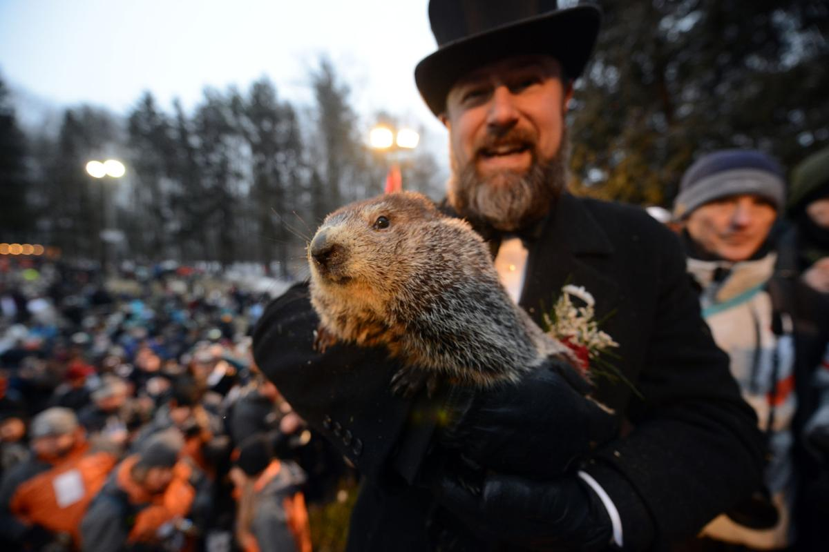 Groundhog Day 03.JPG