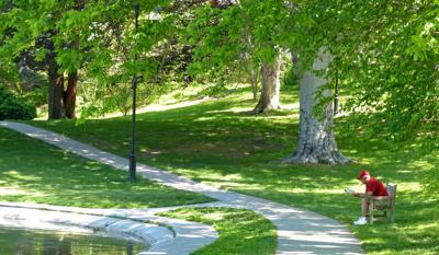 Wilcox Park