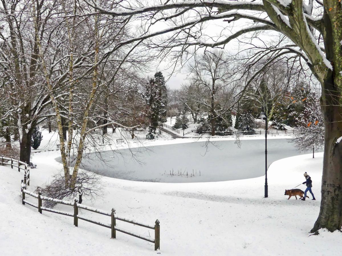 Snow March 4.JPG