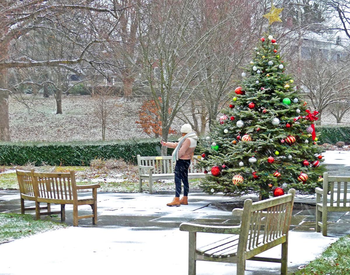 120219 WES Xmas tree in Wilcox Park in snow 123.JPG