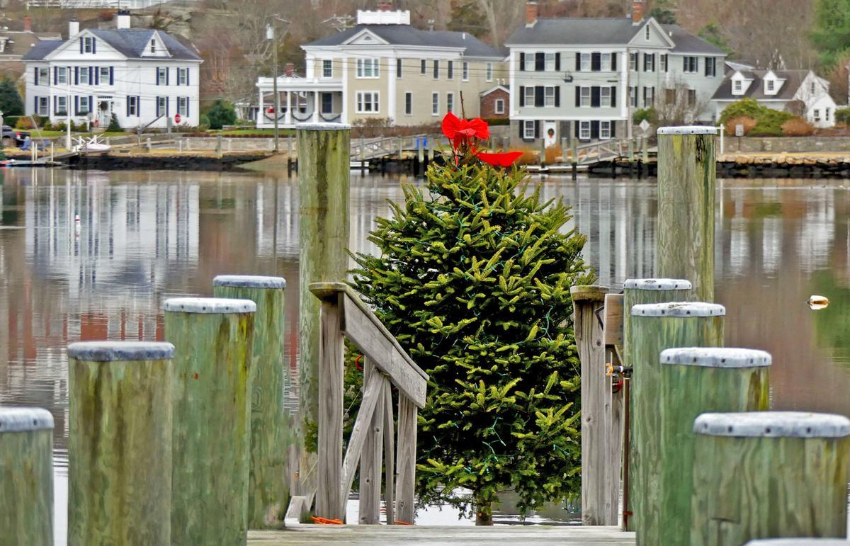 121319 MYS Xmas tree on dock 117.JPG