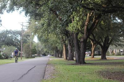 City Council votes no to tighten parking on Whitehead Blvd.