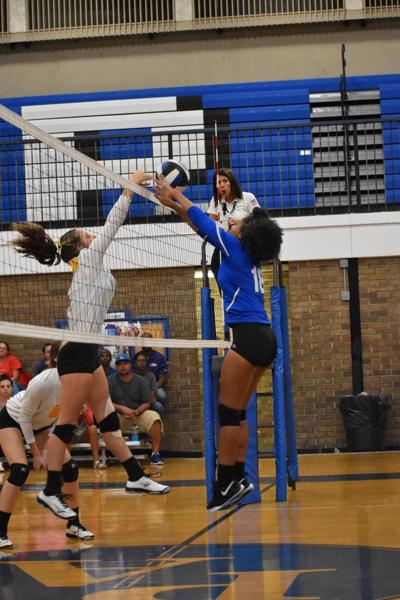 Port Allen and Brusly volleyball