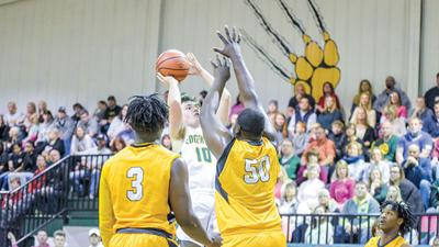 Wildcats win to set up rematch with Autauga in title game