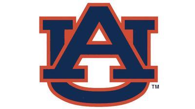 Auburn logo - WEB.jpg