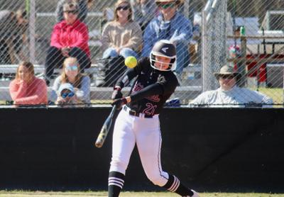 Elmore County Softball (copy) - roundup