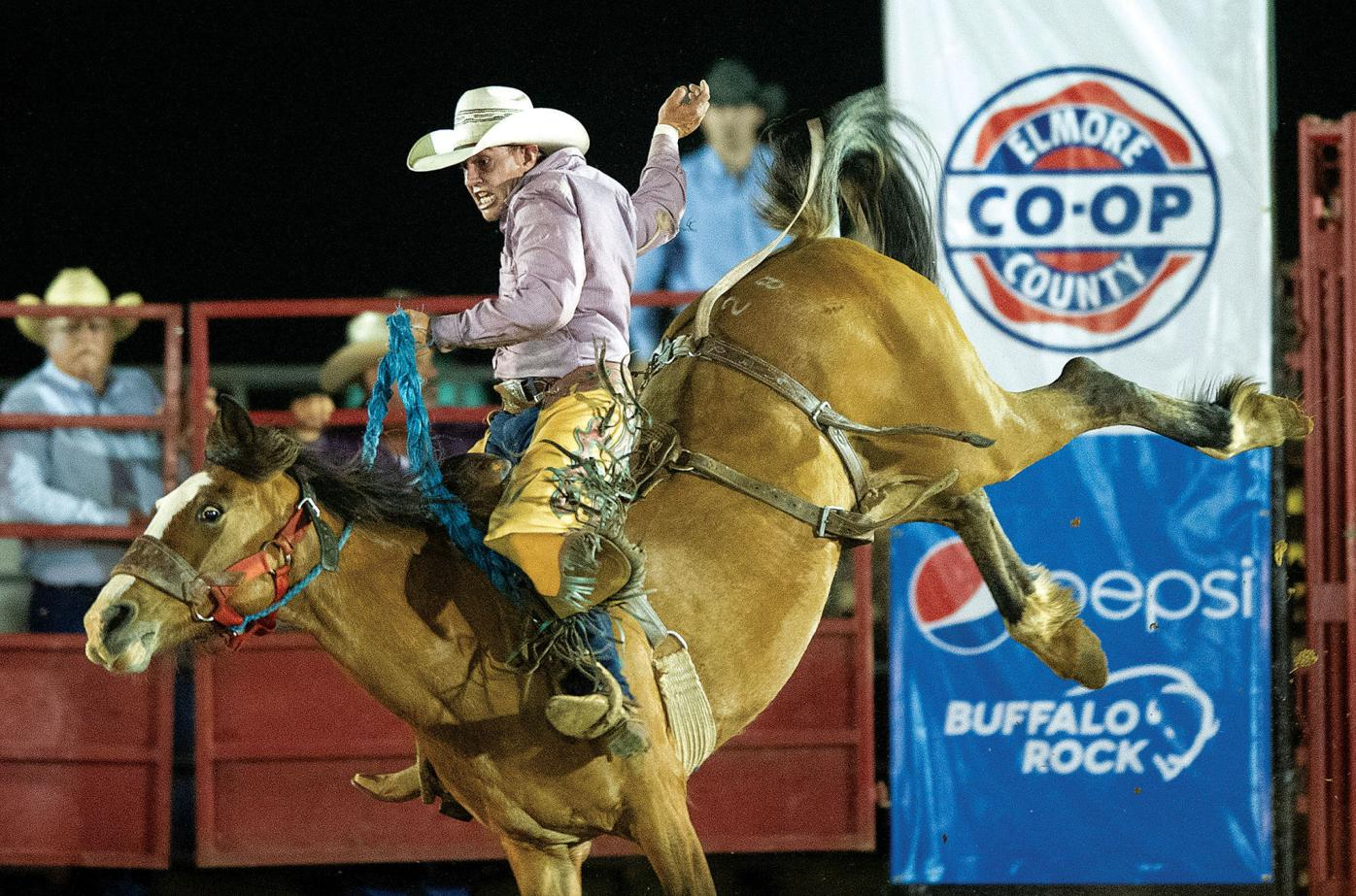 0508 Rodeo 12.jpg