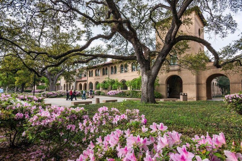 LSU to close in anticipation of Hurricane Delta