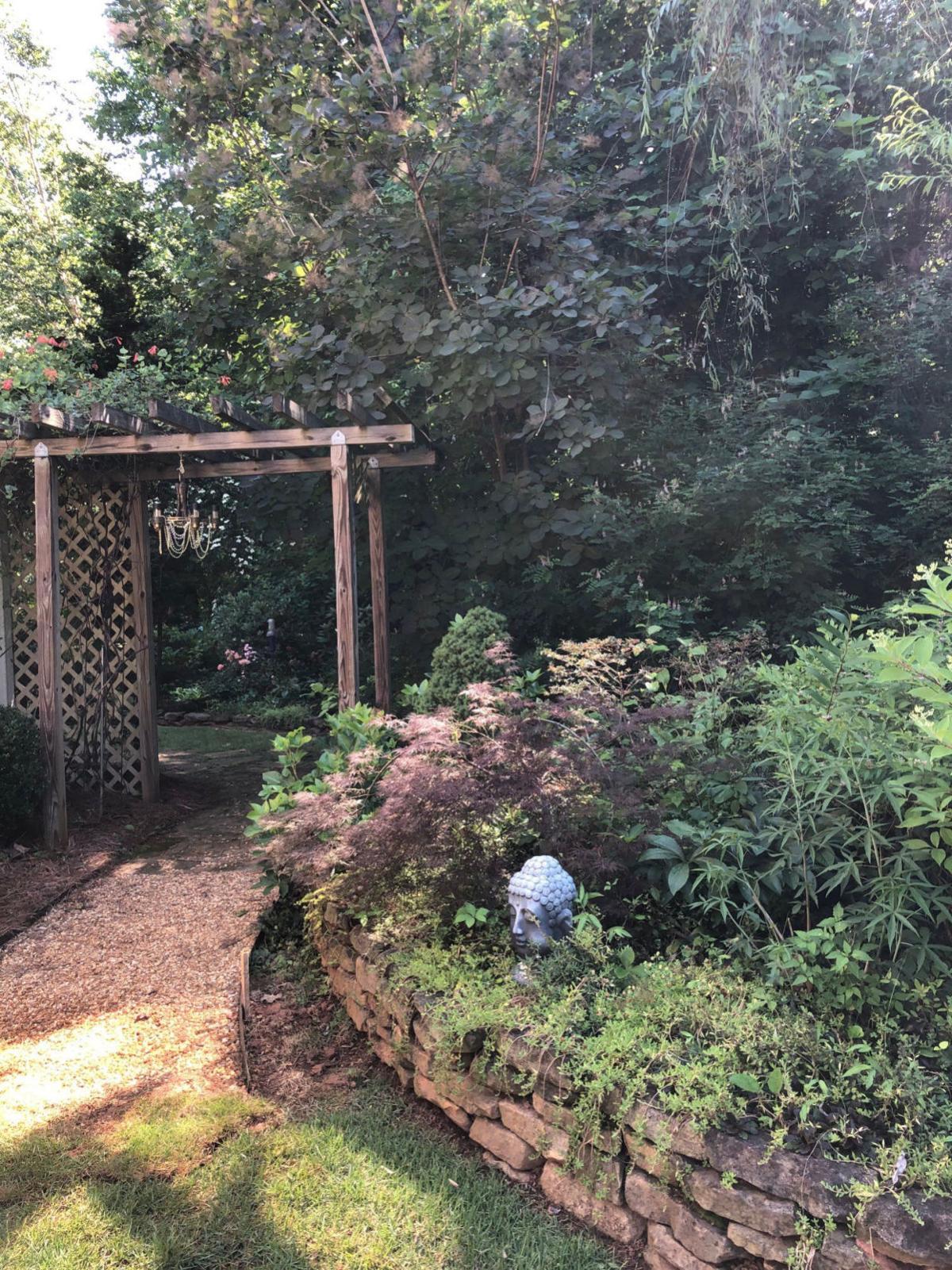 Garden photo one