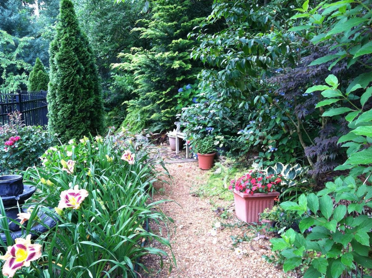 Garden photo two