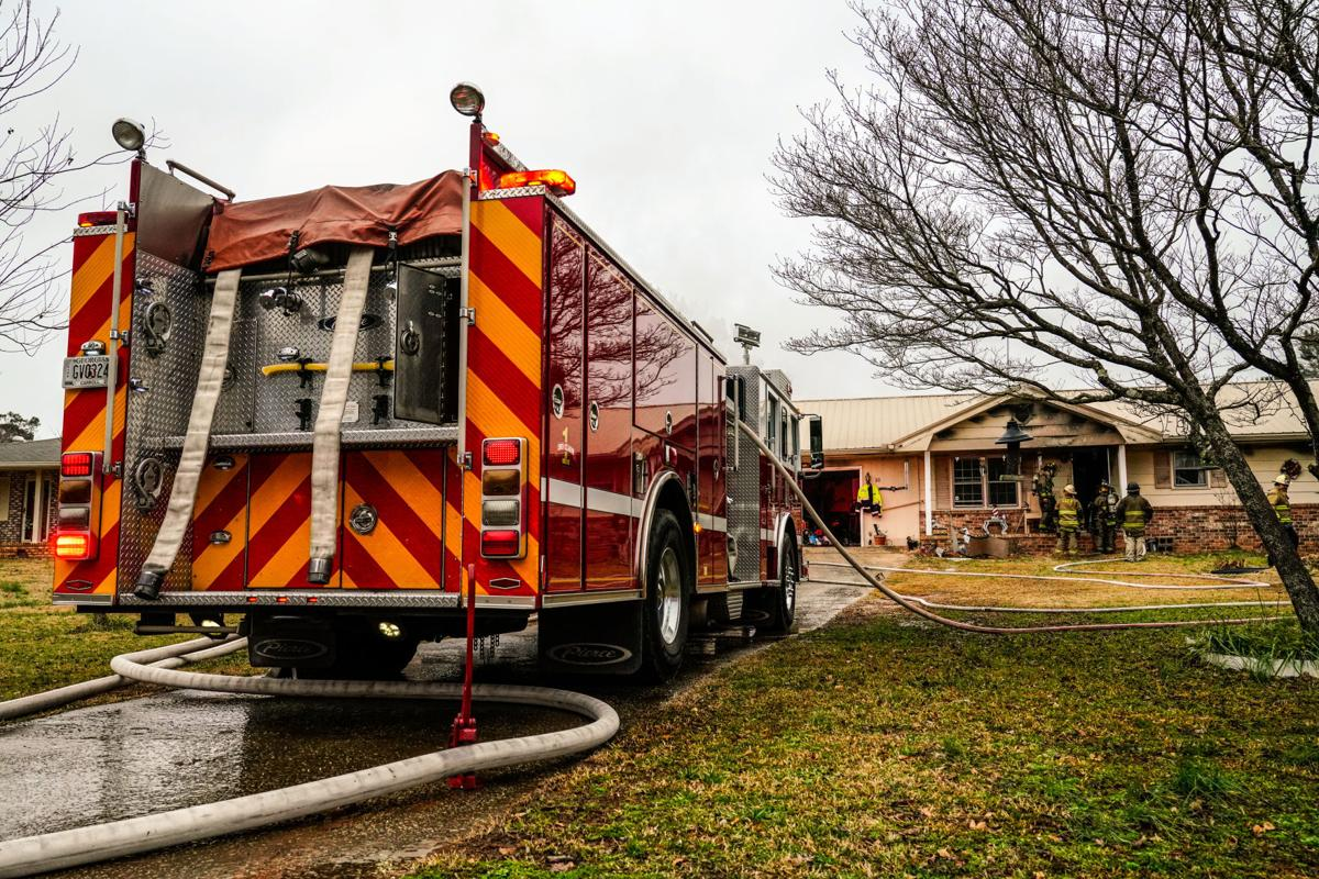 Litter of puppies survive residential fire