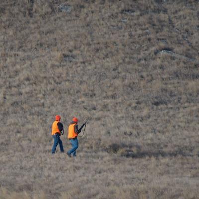 Hunters Walking a Field