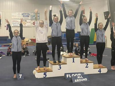 VC Gymnasts Results