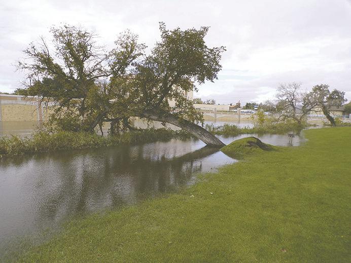 Sheyenne River - City Park