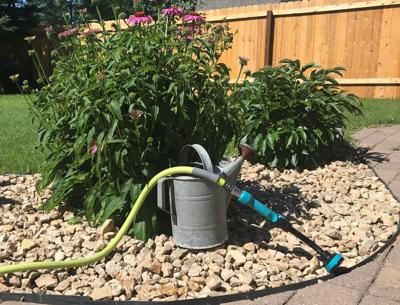 Dakota Gardener Watering Plants