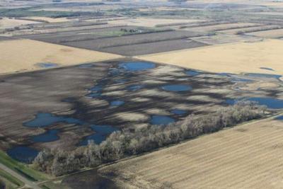 BC Farmland Flooded